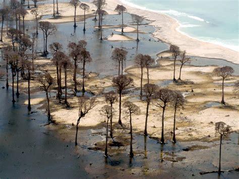 imagenes fuertes tsunami 2004 tsunami facts and information