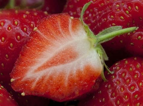 7 Uses For Fruit by Strawberry Tooth Whitener 7 Uses For Fruit