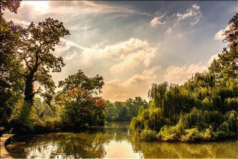 garten dresden kaufen dresden gro 223 er garten carolasee foto bild natur