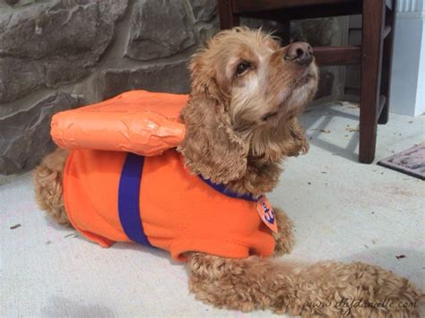paw patrol dogs costume for the zuma from paw patrol diy danielle
