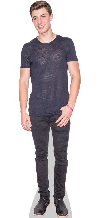 life size taylor swift cardboard cutout for sale shawn mendes cardboard cutout celebrity life sized