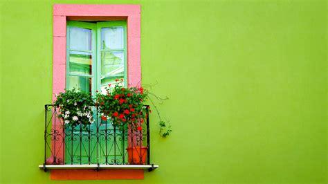 wallpaper green wall green wall window wallpapers hd wallpapers id 10025
