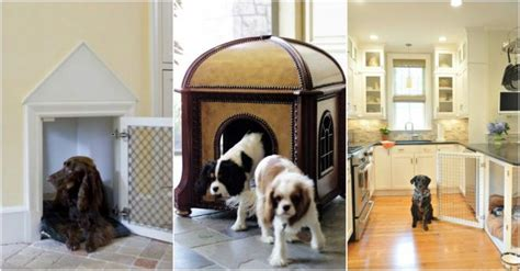 cool indoor dog houses 25 cool indoor dog house designs how to instructions