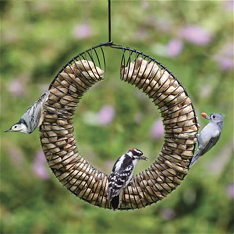 whole peanut wreath feeder