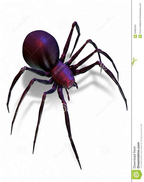 imagenes de arañas blancas ara 241 a de la viuda negra aislada en blanco foto de archivo