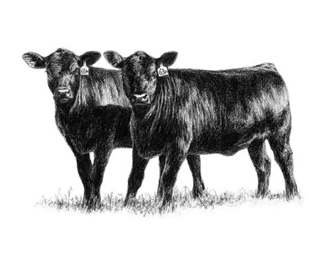 Hello 2015 Pair Set 8in1 2015 farm bureau clover classic 4 h livestock show clover gazette