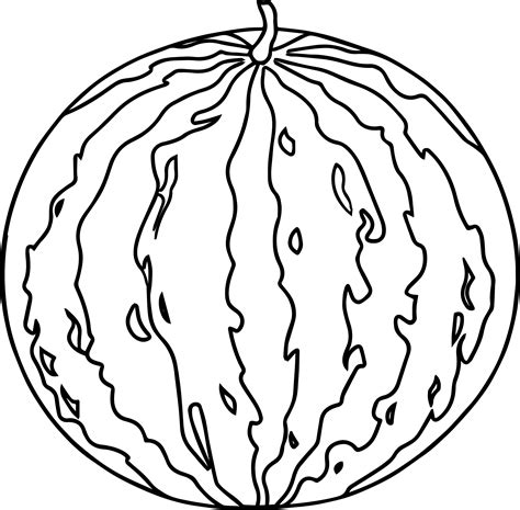 watermelon coloring page watermelon image summer coloring page wecoloringpage