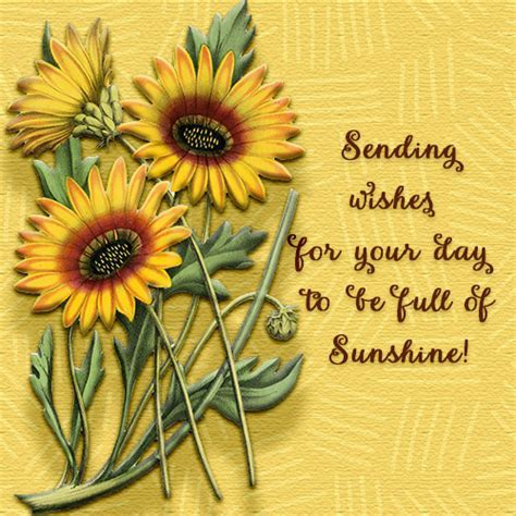 May Your Day Be Full Of Sunshine. Free Have a Great Day