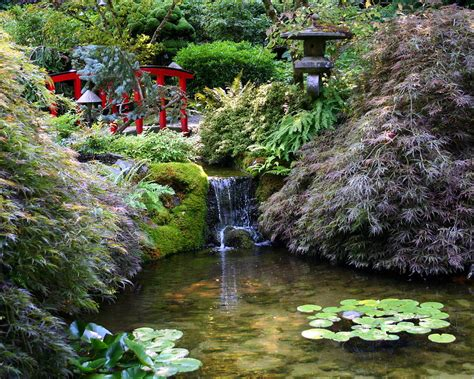 Garden Of Tranquility by Tranquility In A Japanese Garden Photograph By Laurel Talabere