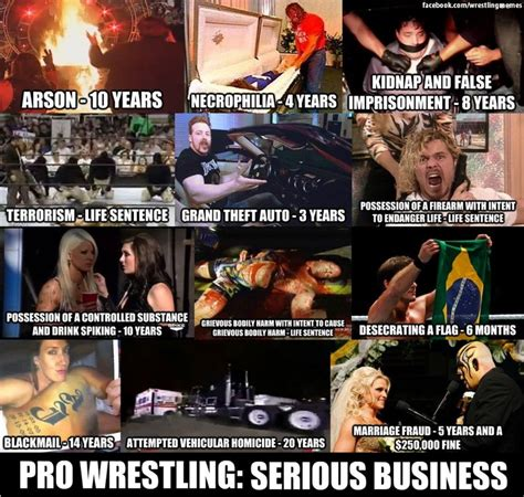 Meme Wrestling - pro wrestling serious business wwe pinterest wwe