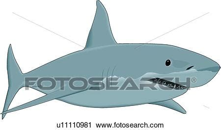 Great White Shark Clip by Clipart Of Great White Shark U11110981 Search Clip