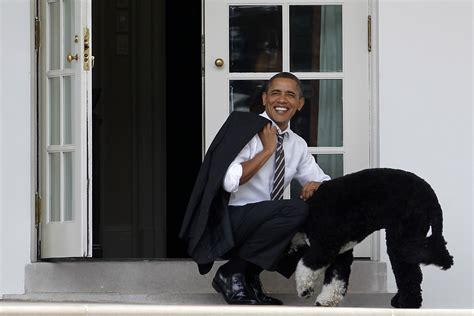 obama dogs obama romney wars cultural lessons for the dinner table csmonitor