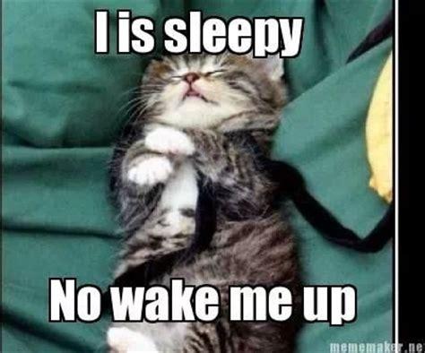 Im Sleepy Meme - i m sleepy sayings pinterest
