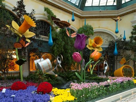 Botanical Gardens Vegas Things To Do With In Las Vegas Family Vacation Hub