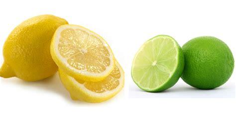 laporan praktikum membuat baterai dari jeruk lemon wajah mulus berkat buah lemon hingga jeruk dream co id