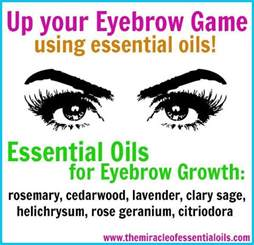 essential oils for hair growth and thickness best 25 thicker eyebrows ideas on pinterest