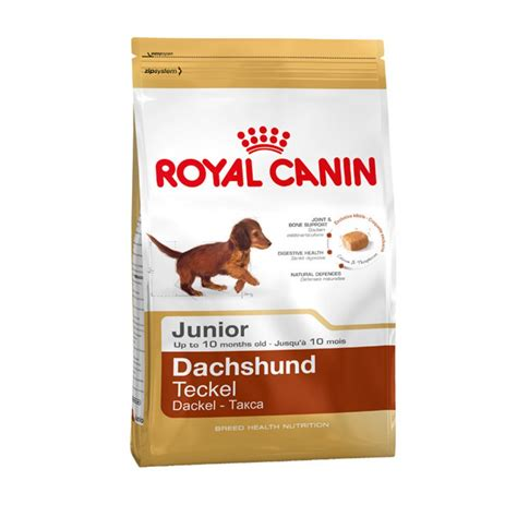 royal canin puppy royal canin dachshund junior food 1 5kg feedem