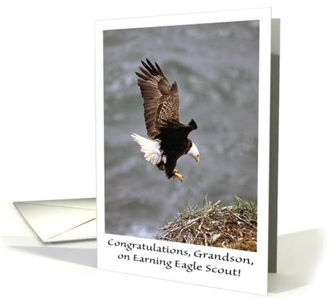 blank eagle scout cards templates free congratulations eagle scout grandson card 620389