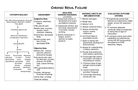 Nursing Care Plan Chronic Renal Failure Chronic Care Management Template 2017