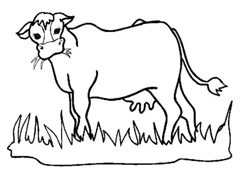 animated cow coloring pages