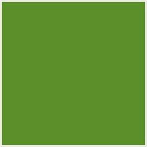 google image result for http kimscrane com images ac11y4 the color up forest green codes matching paint and