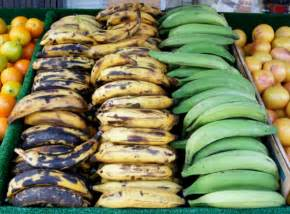 the earth of india all about plantain in india