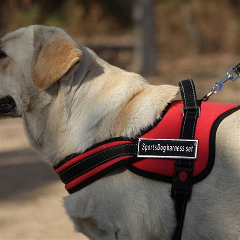 comfort harness for large dogs soft comfortable large dog harness for pet dog chien