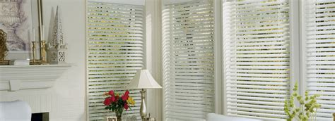 enclosed blinds replacement windows window blinds