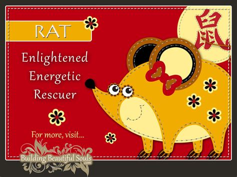 new year meaning of rat year of the rat named big cheese of the zodiac