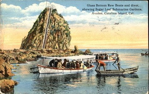 glass bottom boat avalon ca glass bottom row boats and diver avalon santa catalina