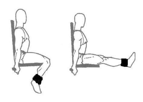 leg extension from www the fitness motivator 171 blogoath