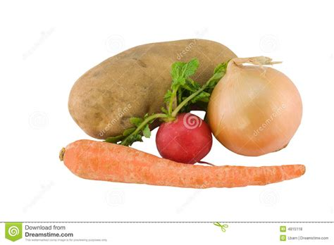vegetables underground underground vegetables on white stock photo image 4815118