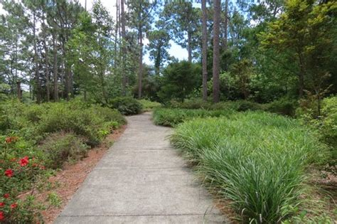 Mobile Botanical Garden Path Picture Of Mobile Botanical Gardens Mobile Tripadvisor