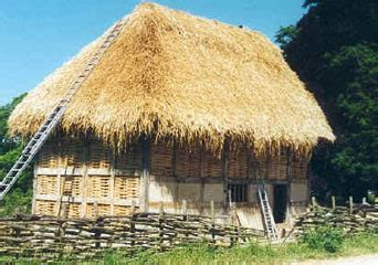 insurance for thatched houses new insurance for thatch country life