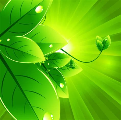 background friendly set of eco friendly with green leaves background vector