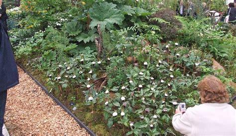 154 Best Images About Scottish Gardens On Pinterest Scottish Rock Garden Club