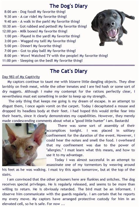 diary vs cat diary diary vs cat diary