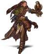 pathfinder roleplaying advanced player s guide paizo paizo paizo 2010 july