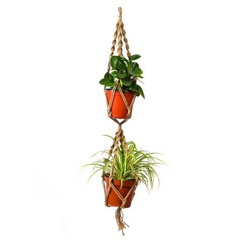Hanging Plant Hooks - indoor plant hooks reviews shopping indoor plant