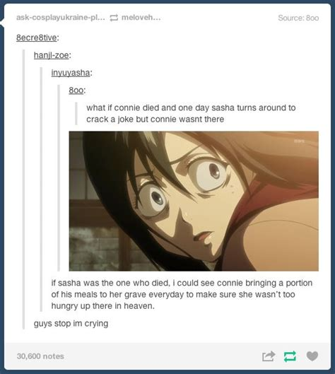 aot facts tumblr 899 best images about attack on titans on pinterest