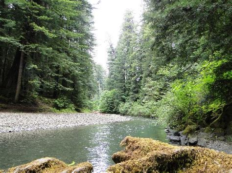 bullfrog creek mobile home park humboldt redwoods state park weott ca top tips before