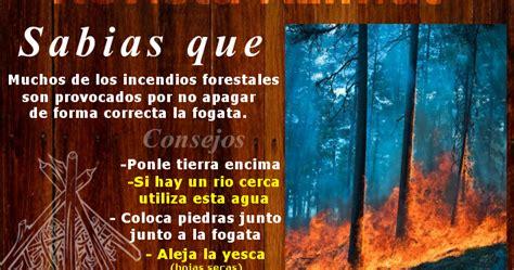 predicaciones no dejes apagar el fuego en el altar evita incendios forestales apaga bien la fogata revista