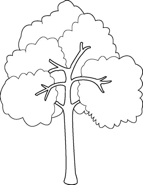 coloring page of a tree branch bare tree with branches coloring page sketch coloring page