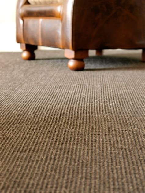 Floor Coverings by Carpets Floor Covering Lounge Bathroom