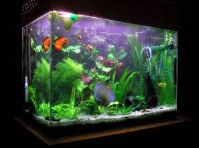 Walmart Desk Hutch Decorations Big Fish Tanks For Sale With Exciting And