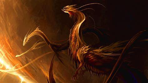 dragon hd wallpaper background image  id