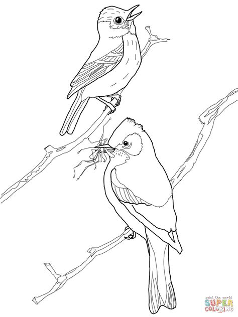 sora bird coloring page printable digimon coloring pages sora bird coloring page