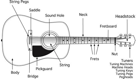 diagram of guitar parts guitar parts starlin