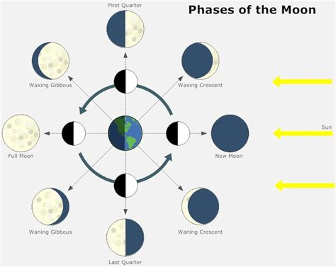diagram of moon phases phases of the moon diagram www imgkid the image