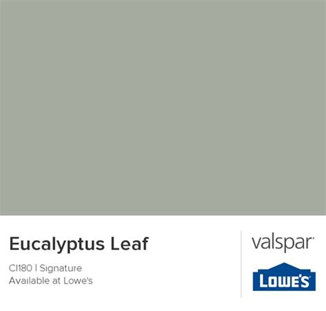 eucalyptus leaf from valspar paint colors colors study and valspar